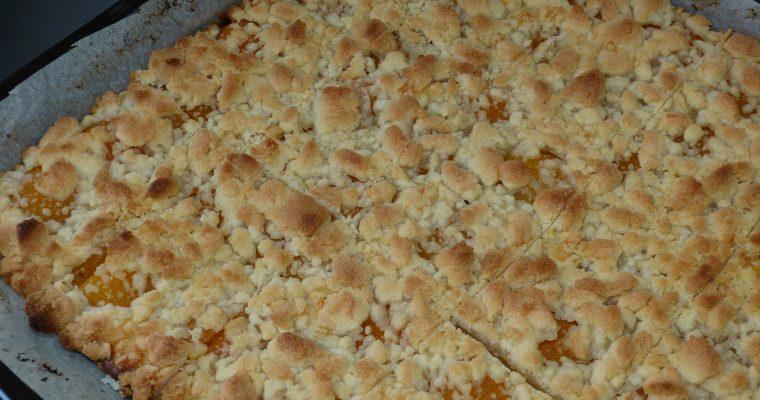 Saftiger Streuselkuchen mit Mandarinen